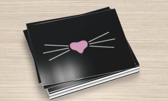 Mr. Whiskers Black Postcards