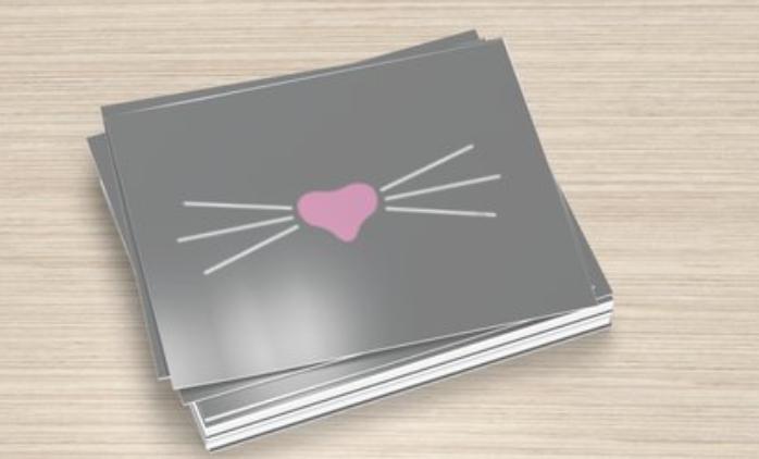 Mr. Whiskers Grey Postcards