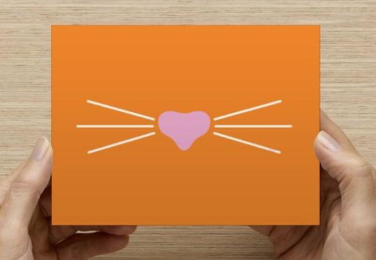 Mr. Whiskers Orange Postcard